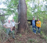 Contest continues…..Help find the largest Beech Tree in the Eastern Panhandle